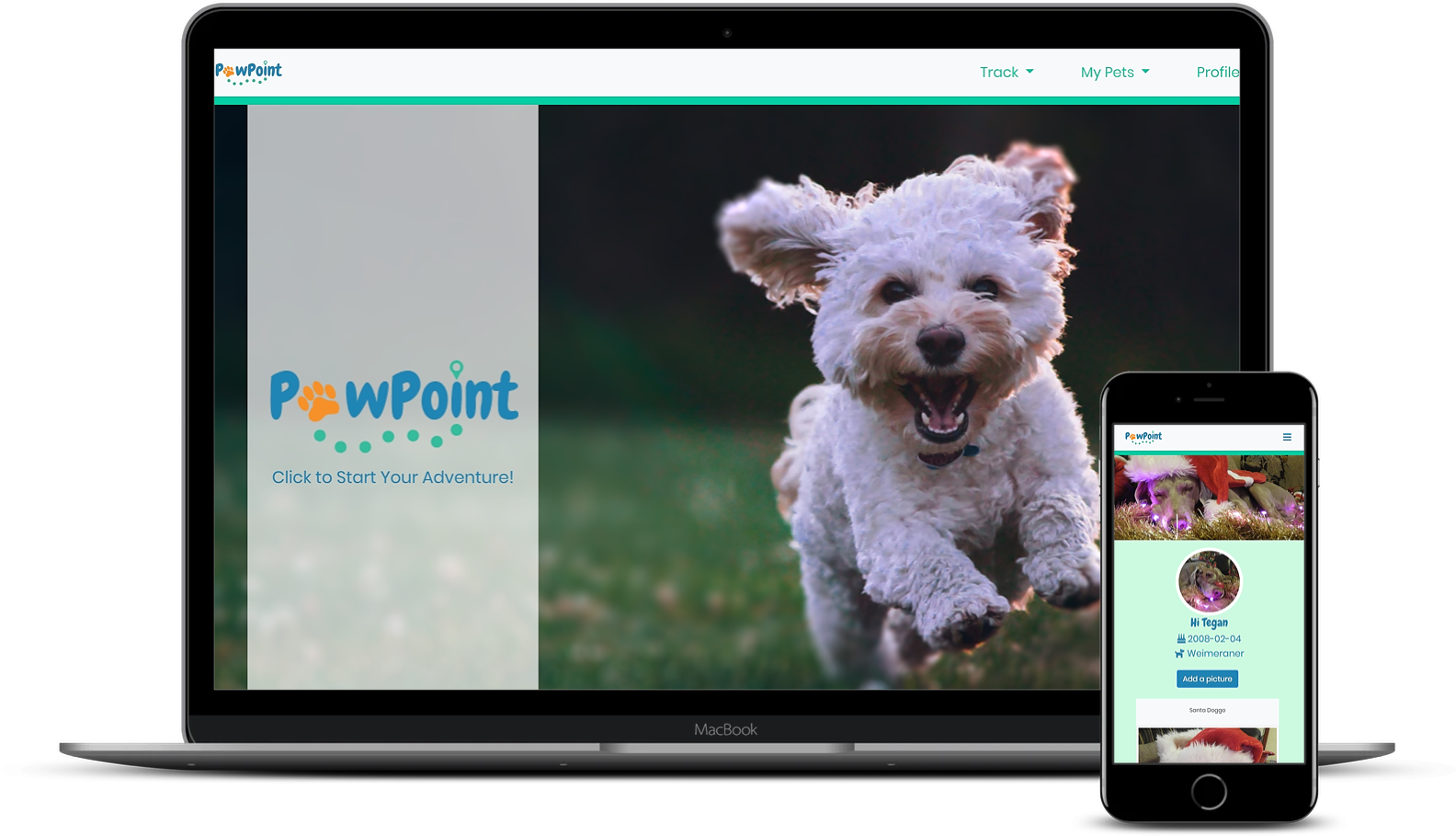 'PawPoint' Device Mock-Up