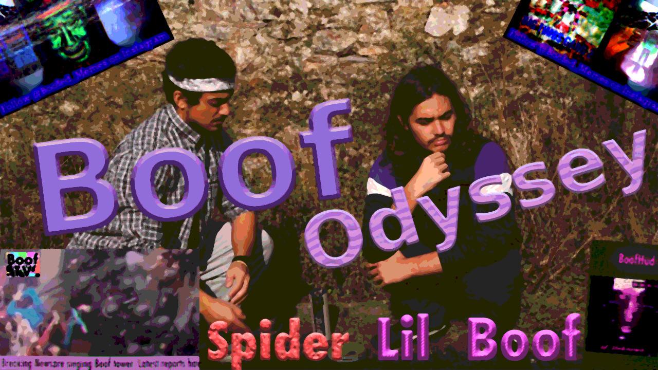 Boof Odyssey Poster