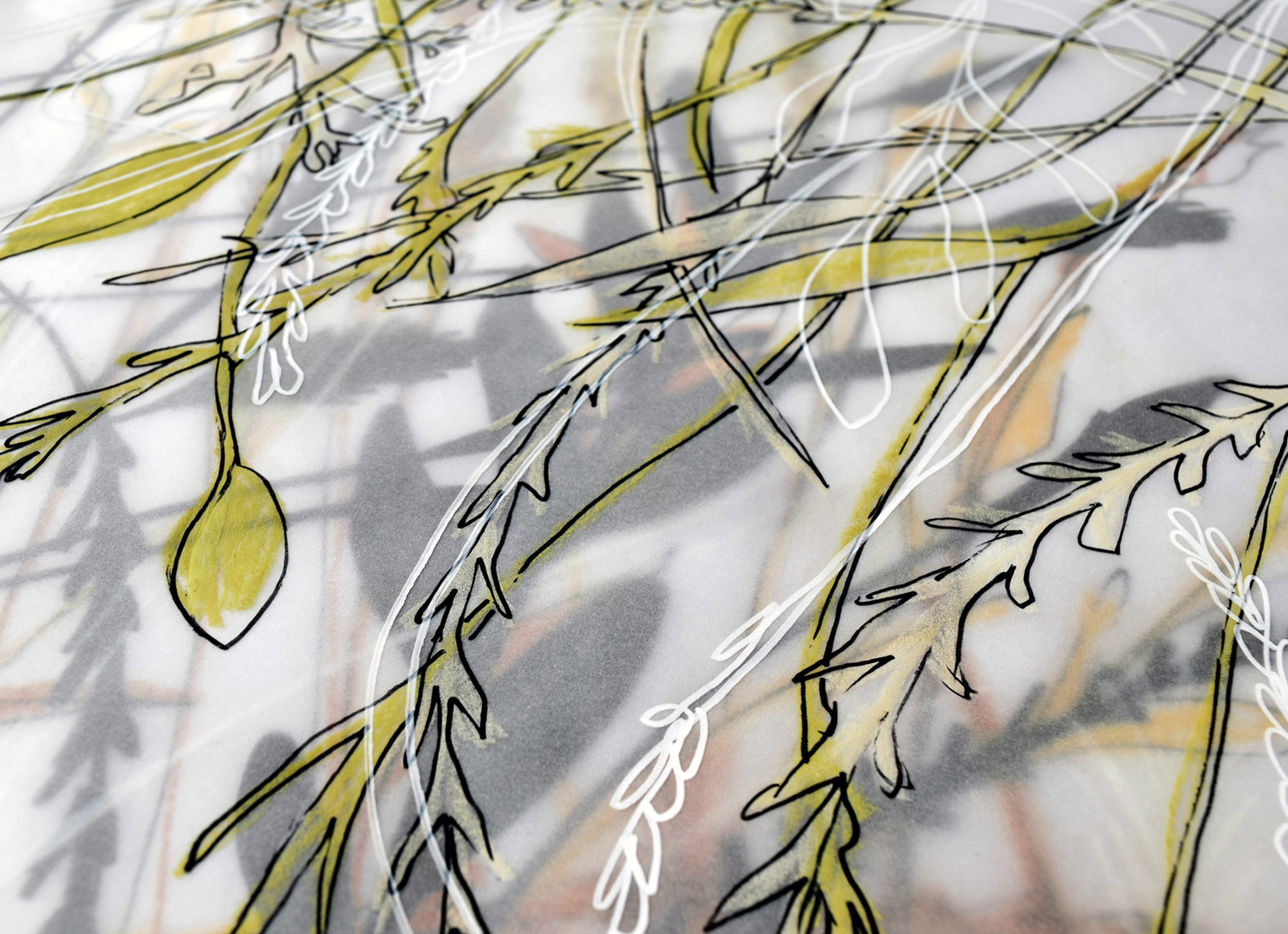 Urbanised Botanics preliminary artwork