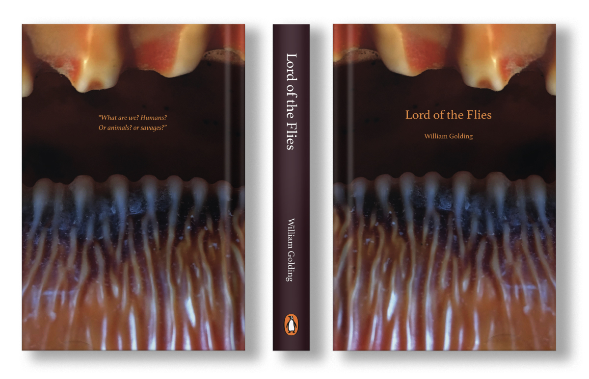 Lord of the Flies Book Cover Design