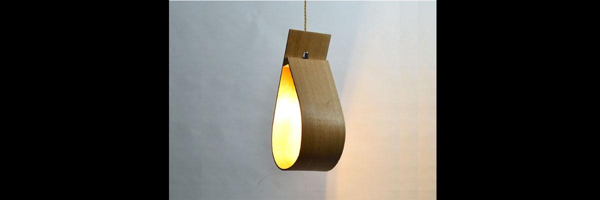 Steam Bent Light