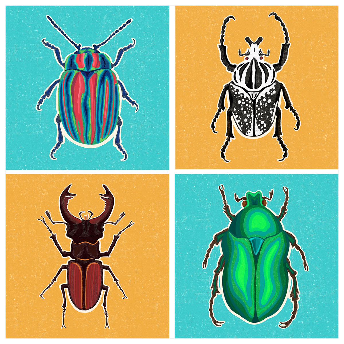 Beetles In The Box